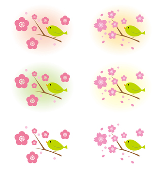 벚꽃 매화 휘파람새 1