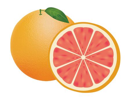 Pink grapefruit 01