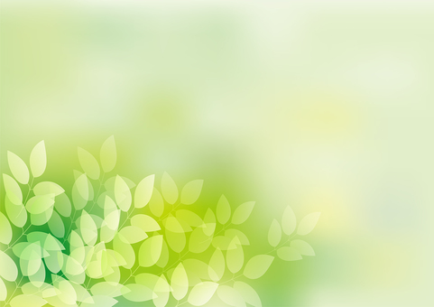 Fresh green 3