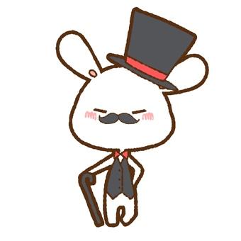 Dundee White Rabbit