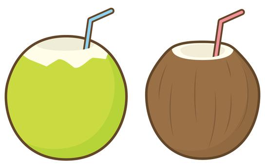 Coconut fruit palm fruit drink
