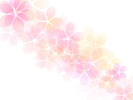 Sakura background simple