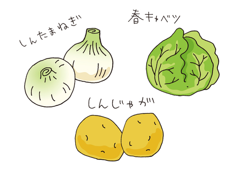 New onion new potatoes spring cabbage