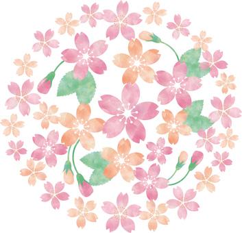 Cherry tree circle _ decoration
