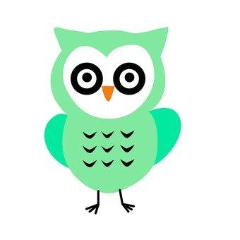 Blue owl 2