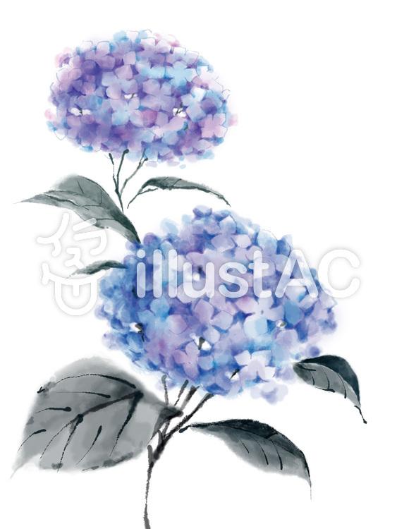 青い紫陽花のイラスト かわいいフリー素材が無料のイラストレイン