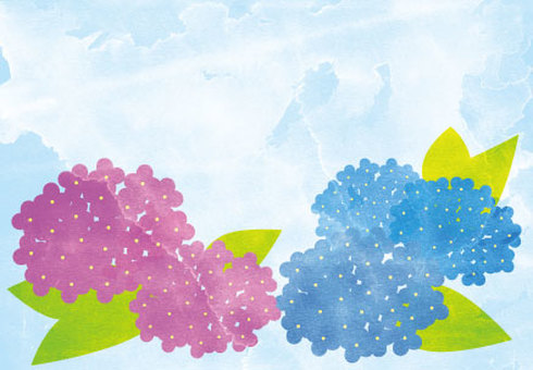 Watercolor style hydrangea postcard size