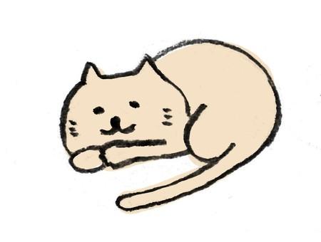 A loose cat nap