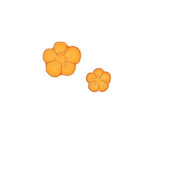 Carrot decoration