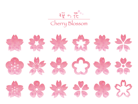 Cherry blossoms material