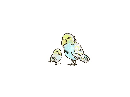 Bird parent and child