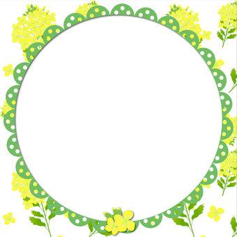 Rape blossom frame 2