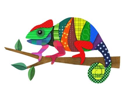 五颜六色的变色蜥蜴