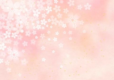 Sakura _ Pink _ Japanese paper background 1763