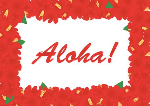 Hawaiian frame 7