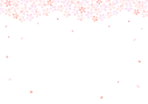 Cherry blossoms background 17