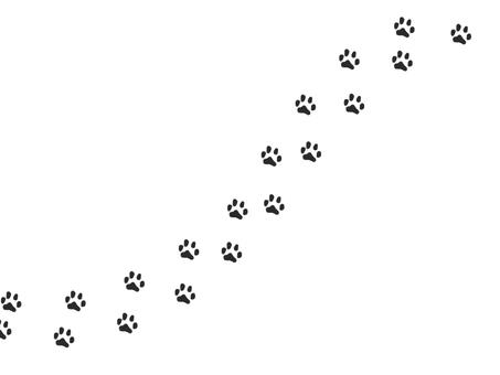 Cat footprint diagonal