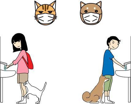 애완 동물