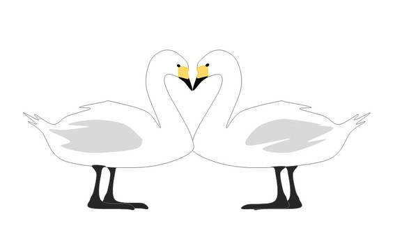 Facing swans