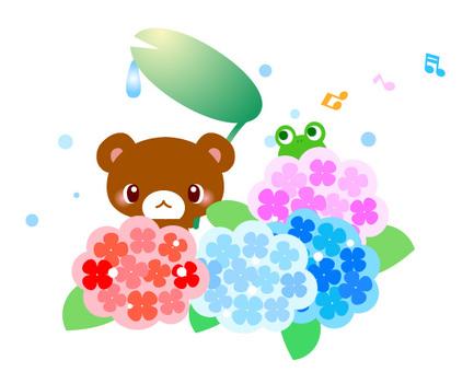 Hydrangea (hydrangea) Takuma illustration
