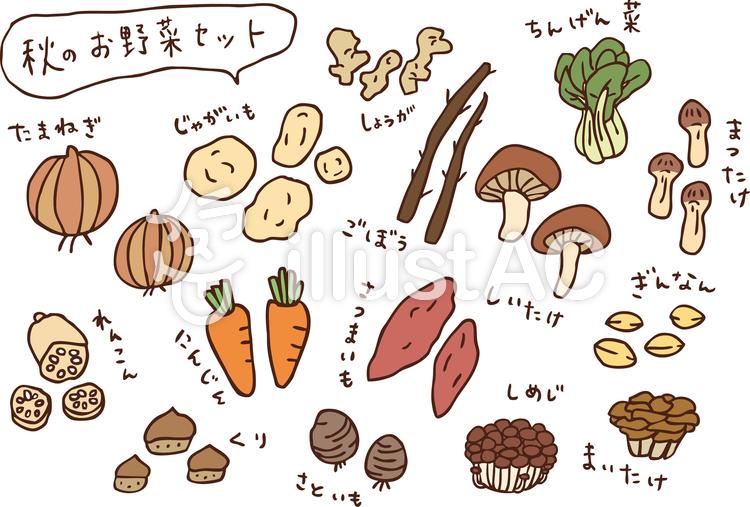 秋のお野菜セット カラーのイラスト