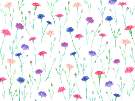 Flower pattern carnation drawing with watercolor