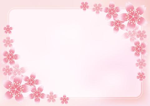 Sakura Sakura & Board 20