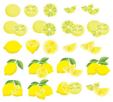 Lemon and citrus