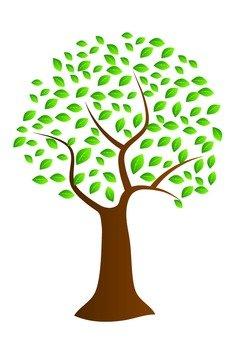 Hiroki Tree 1