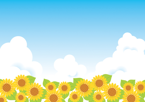 Sunflower and blue sky background 03