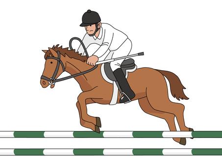 Equestrian sports 3