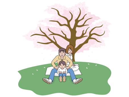 벚꽃 나무와 가족