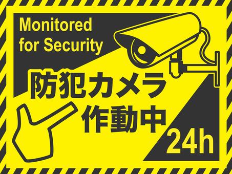 Security camera 2b