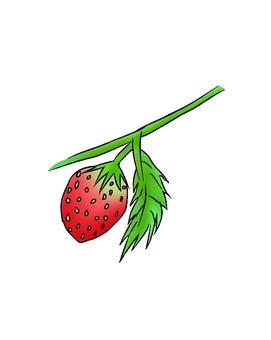 Gradient strawberry white background