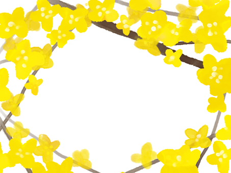 Gold Koizumi (Kinmidzuki)