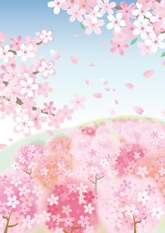 봄 풍경 벚꽃 6