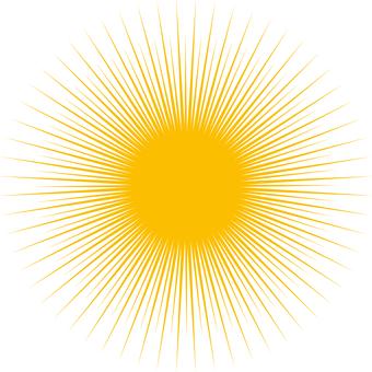 Sea urchin or light