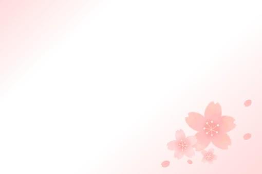 櫻花的留言卡