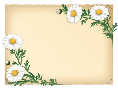 Margaret frame (craft paper)