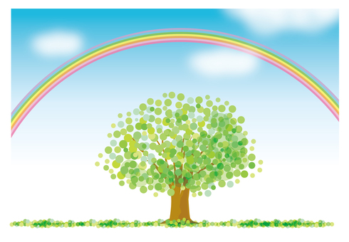 Green tree and blue sky and rainbow