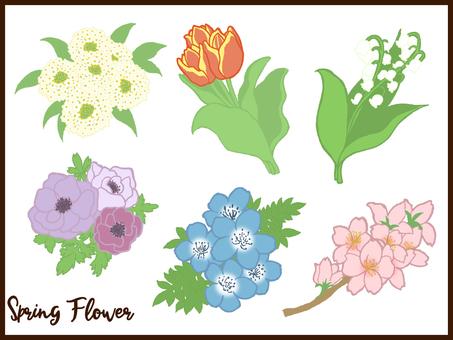 Spring flower set coloring