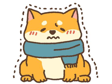 Shivering dog