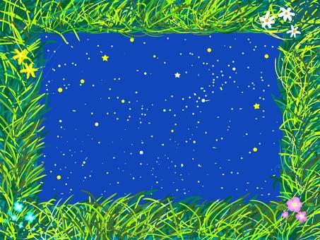 초원과 야생화와 밤하늘
