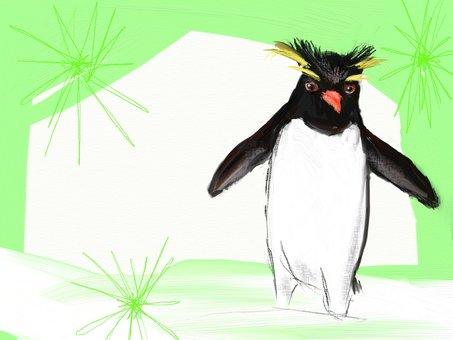 Fang frame of penguins