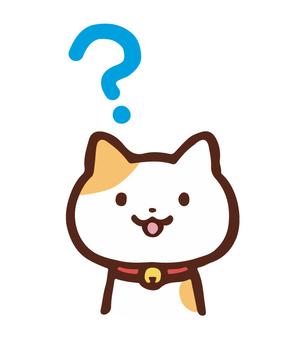 아이콘 고양이 의문