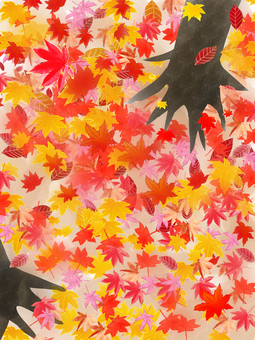 Autumnal leaves forest