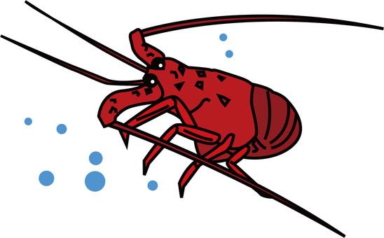 Shrimp Ise 1
