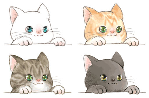Kittens to show your face
