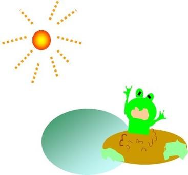 Awakening of the frog
