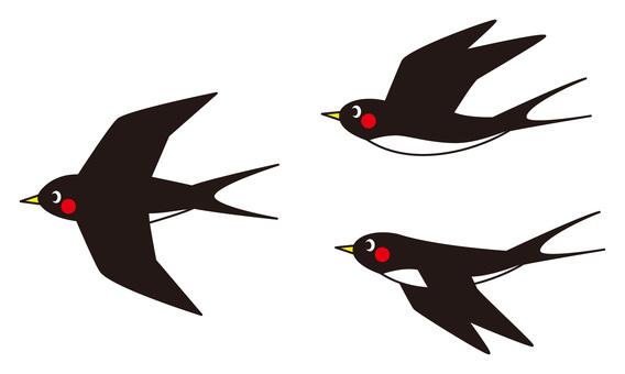 Swallow (Set)